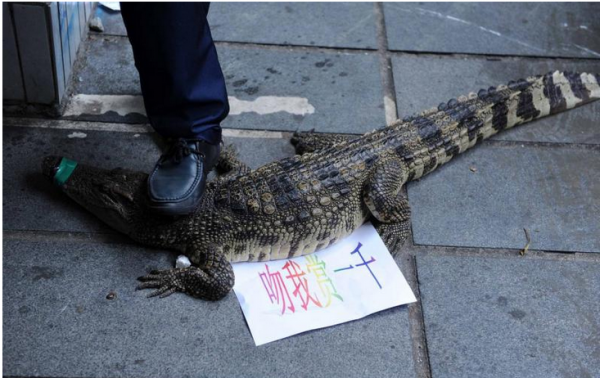"""The note says: """"Kiss me to get 1000 yuan"""". (Image: fzrxw.com)"""