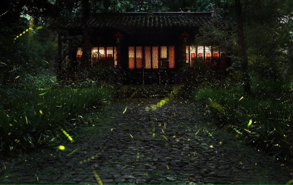 Scene in an oriental fantasy movie. (Image: Weibo.com)