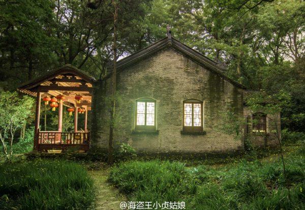 Firefly-Nanjing-Linggu-Temple-8