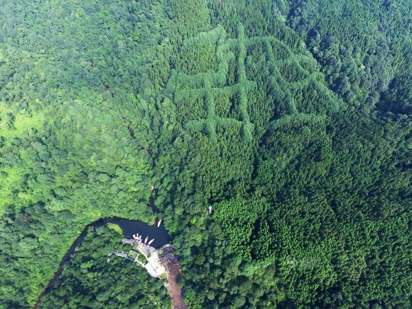 The unusual pattern was seen on the mountain. (Image: Tencent.com)
