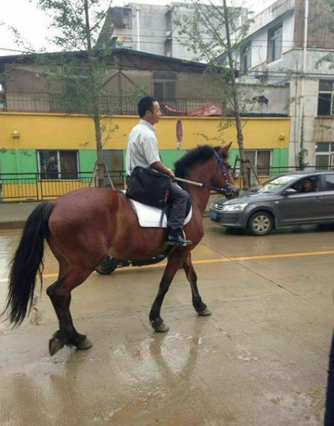 This guy hasn't been late since he rides his horse to work. (Image: NTD TV)