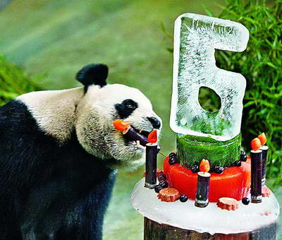 Yuan Yuan received a icy cake for her sixth birthday. (Image: Xmnn.cn)