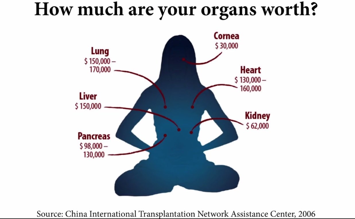 One of the slide images used in the TEDx talk on forced organ harvesting in China. (Image: TEDx Talks via YouTube/Screenshot)