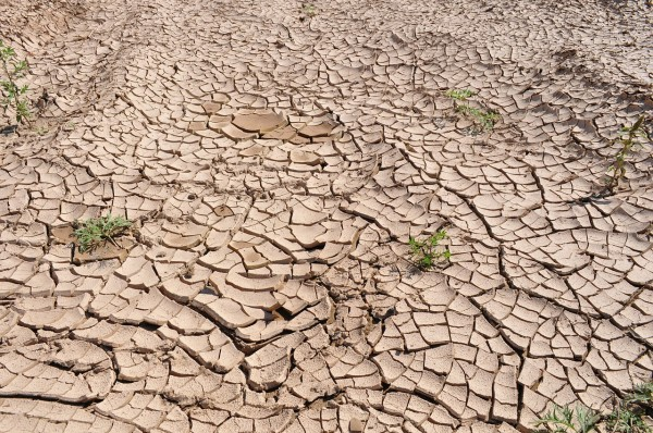 A region plagued by prolonged drought caused a mass exodus of peasants. (Image: pixabay / CC0 1.0)