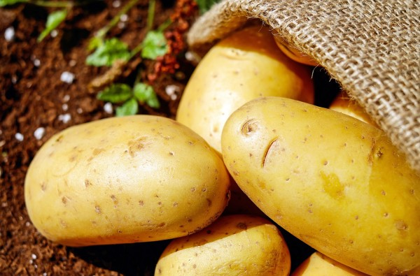 Lao Wang joined the flow of refugees out of his village with his only worldly possession, a bag of potatoes. (Image: pixabay / CC0 1.0)
