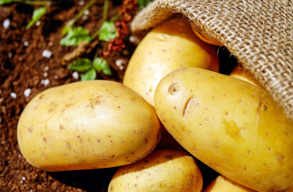 Potatoes are one of the few vegetables that are rich in potassium with an average of 502 milligrams per 100 gram serving.(Image: pixabay / CC0 1.0)