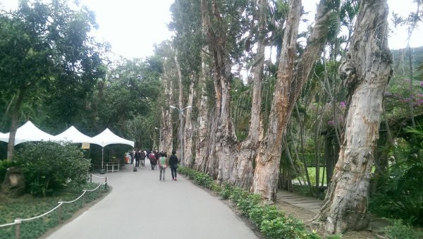 Shilin Official Residence Park in Taipei, Taiwan (Image: Billy Shyu/ Vision Times)