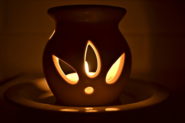 Burning essential oils in a diffuser is one way to enjoy and benefit from the plants beneficial compounds. (Image: Pixabay/ CCO 1.0)