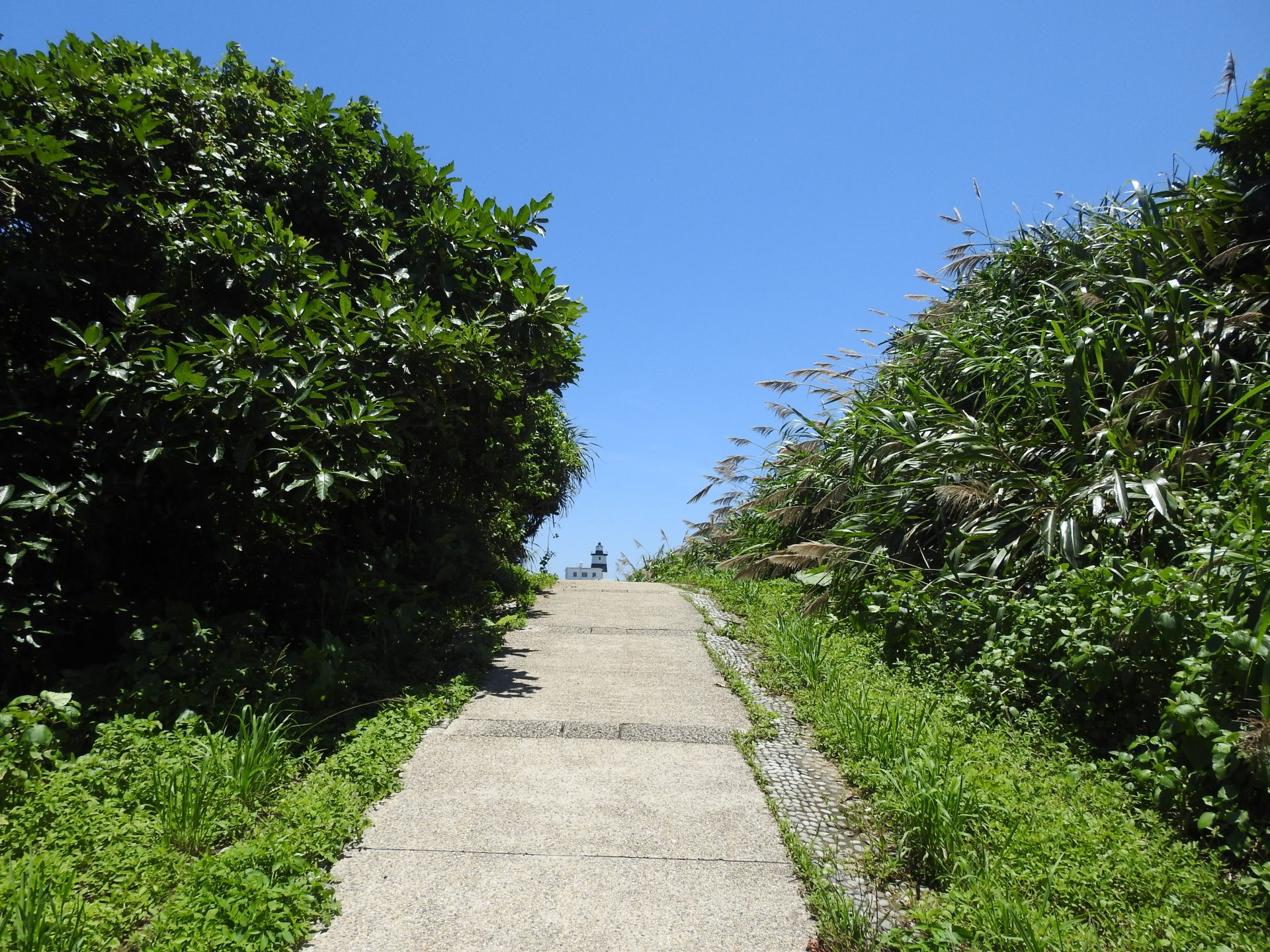 A trail in Fugui Cape Park that leads to the Fugui Cape Lighthouse. (Billy Shyu/ Vision Times)