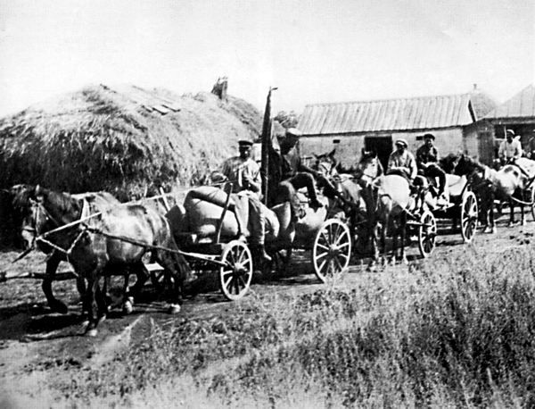 """During the """"Holodomor"""", brigades of """"Red Train"""" carts were part of the communist's policy of deliberately taking away the food of Ukrainian peasants so as to facilitate their starvation. (Image: Wikipedia Commons)"""
