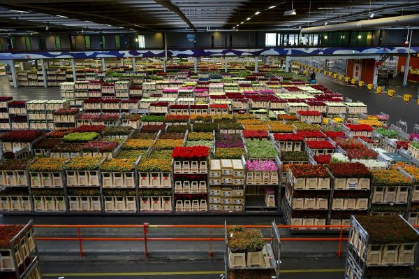 A more global and far more competitive economy has kept the warehousing industry on its toes for many years now, and it's proven itself surprisingly resilient. (Image: pixabay / CC0 1.0)