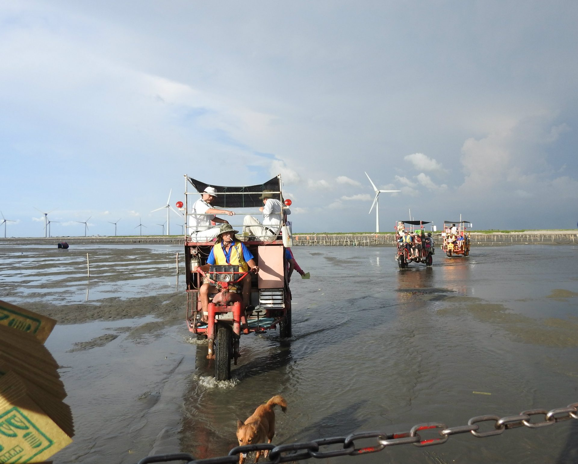 A unique three-wheel oyster truck transporting visitors to the intertidal zone in Wanggong (Image: Billy Shyu/ Vision Times)
