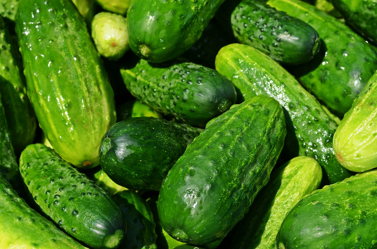 Cucumber has cooling and hydrating effect, and can help rid the body of toxins, reduce swelling, and treat the symptoms of a heat rash. (Image: pixabay / CC0 1.0)