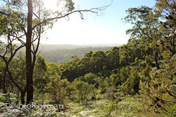 (Image: BioR Australia via flickr CC BY-NC-ND 2.0 )