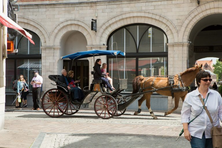 One of the many horse-carriages being pulled through the city of Bruges. (Photo: Hermann Rohr for The Nspirement)