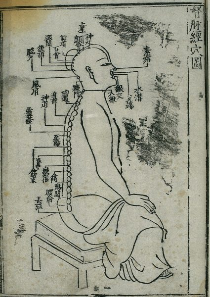 Ancient Acupuncture chart, dumai (Governor Vessel). (Image Credit: (By Welcomeimages, [CC BY 4.0], via Wikimedia Commons)