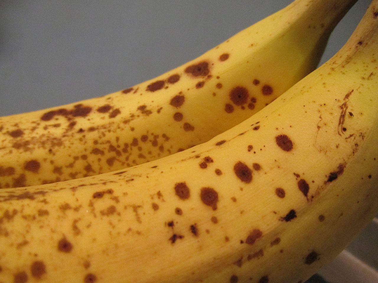 Banana_0757