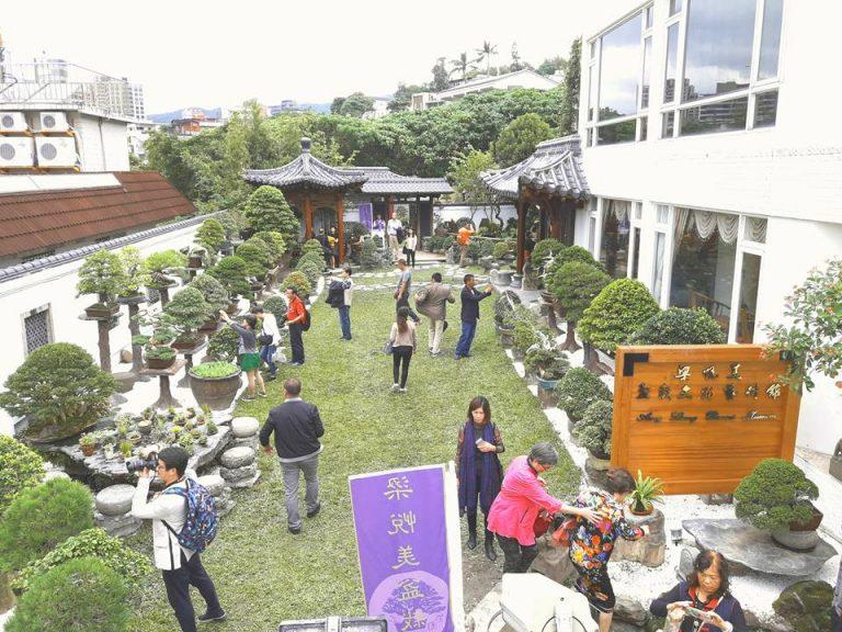 The garden of Amy Liang Bonsai Museum in Taipei, Taiwan (Image: Courtesy of Zhang Ruiyan)
