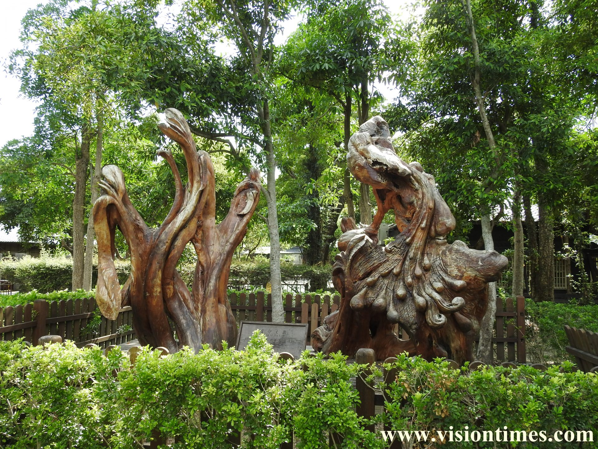 The giant driftwood artifacts in Luodong Forestry Culture Garden are very unique. (Image: Billy Shyu / Vision Times)