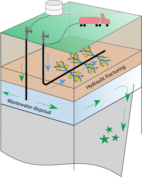 Small earthquakes (yellow stars) can be induced during hydraulic fracturing when high-pressure fluid (blue arrows) is pumped into horizontal wells to crack rock layers containing natural gas. Earthquakes (green stars) can also be induced by disposal of wastewater from gas and oil operations into deep vertical wells. Over time, the disposal layer migrates away from the well (dashed green arrows), destabilizing preexisting faults. (Image credit: Clara Yoon)