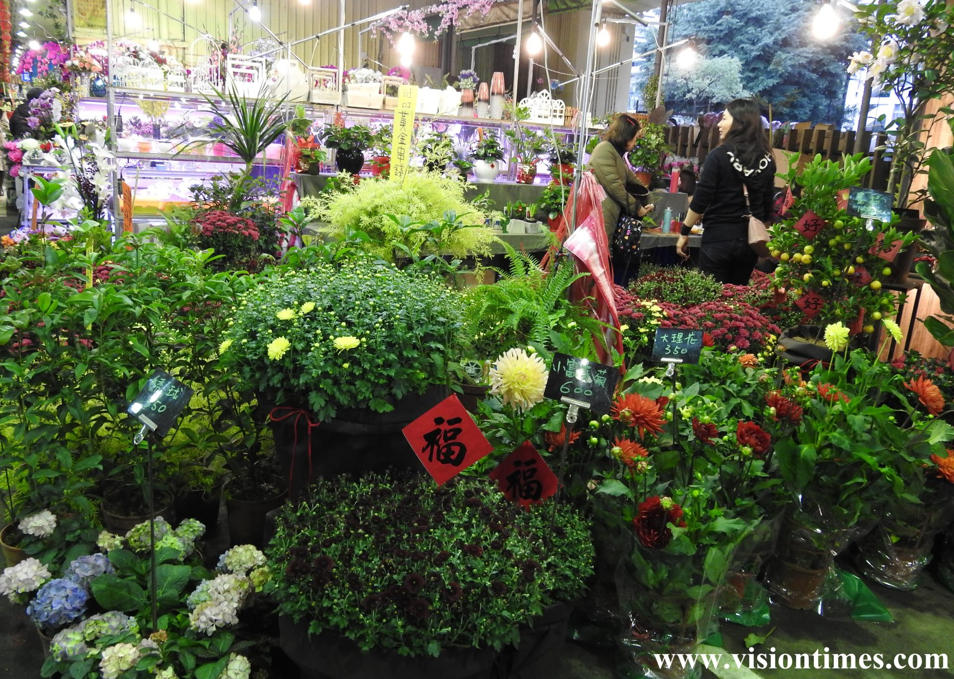 There are 250 peonies in 10 different breeds on display along with popular local flowers at Jianguo Holiday Flower Market. (Image: Billy Shyu / Vision Times)