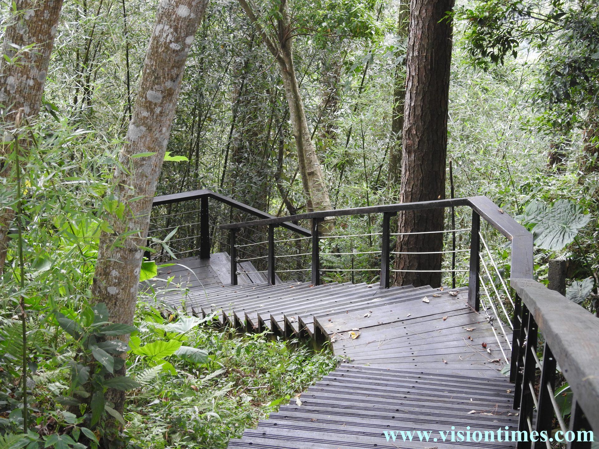 A 165-meter wood path was originally designed as an emergency evacuation trail for Chiang Kai-shek. (Image: Julia Fu / Vision Times)