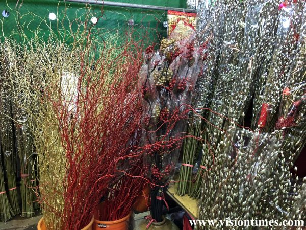 As cat-tail willow (銀柳) symbolizes improvements and breakthroughs, it's very popular on the Lunar New Year in Taiwan. (Image: Julia Fu / Vision Times)