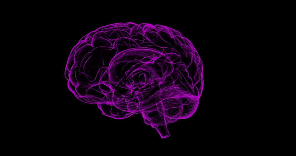 Making the connections between brain cells is key to improved cognitive functions. (Image: Pixabay / CC0 1.0)