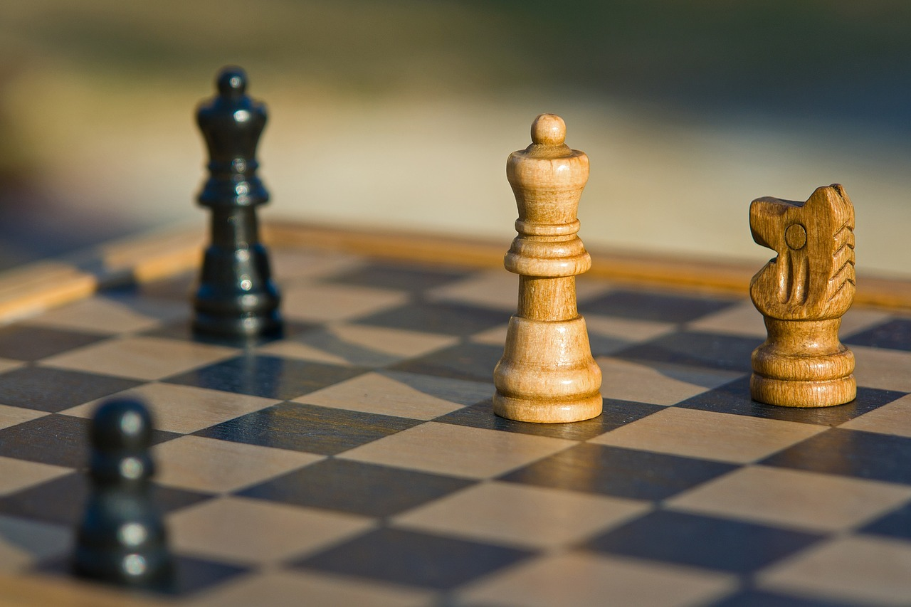 Post-retirement activities like playing chess, court games, painting, calligraphy, gardening, reading, poetry, singing, and dancing can prevent brain degradation. (Image: pixabay / CC0 1.0)