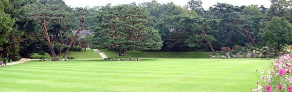 Gardens on the grounds of Cheong Wa Dae. (Image: Steve46814 via wikimedia CC BY-SA 3.0)