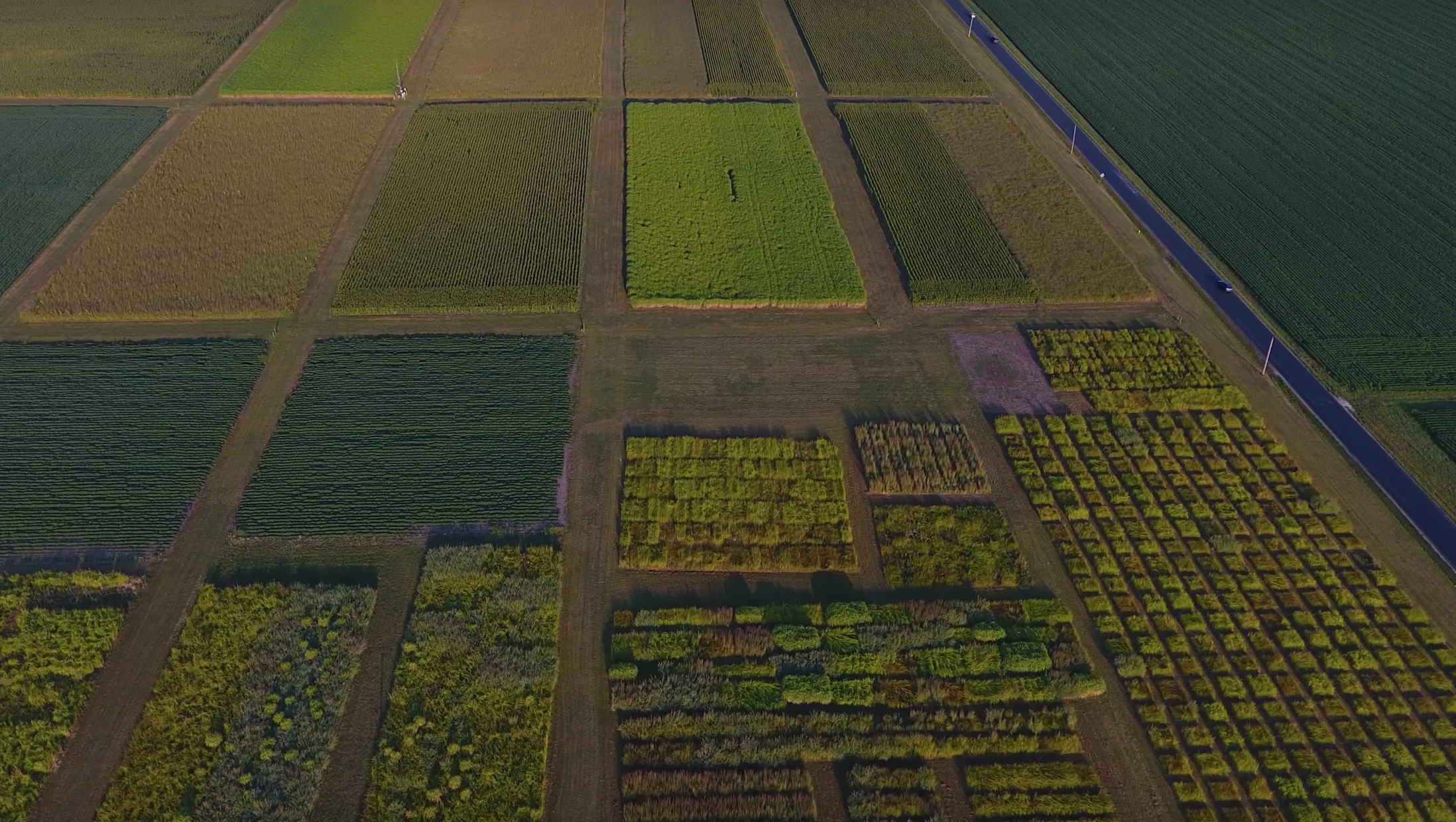 Arable farms already apply crushed rock in the form of limestone to reverse acidification of soils caused by farming practices, including the use of fertilizers. (Image: YouTube/Screenshot)