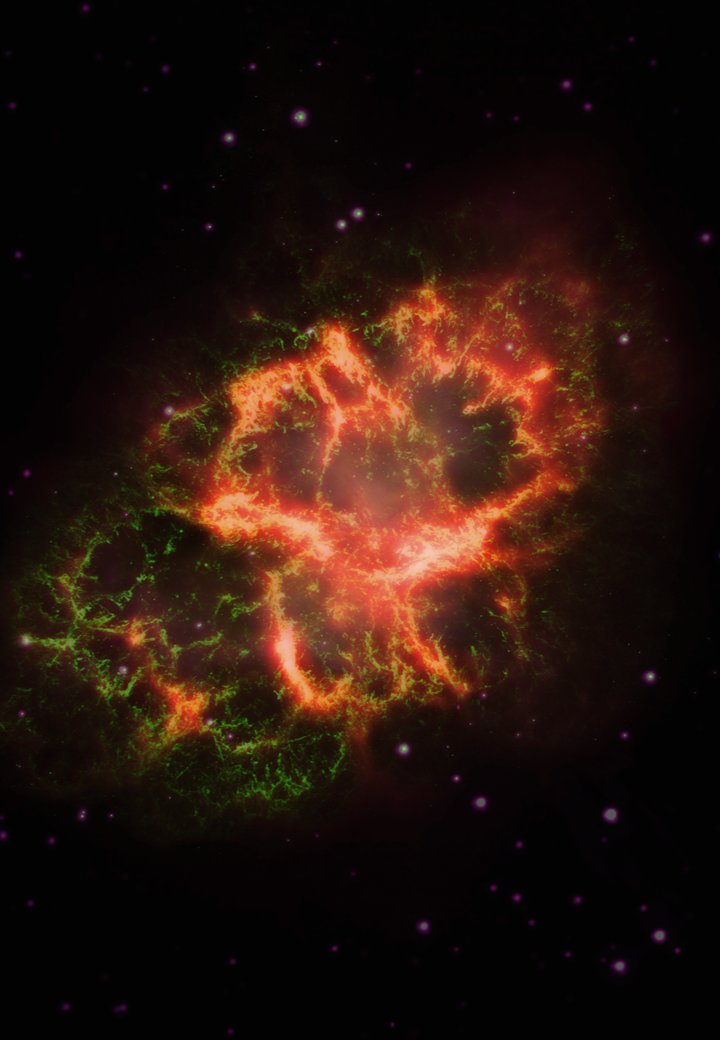 Composite of infrared (shown as red), visible (green) and ultraviolet (violet) images of the Crab Nebula, with IR enhanced and visible/UV balanced to yield neutral star colors. (Credit: J. Greave)