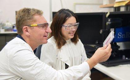 Professor Matt Trau and PhD student Jing Wang. (Credit: University of Queensland)