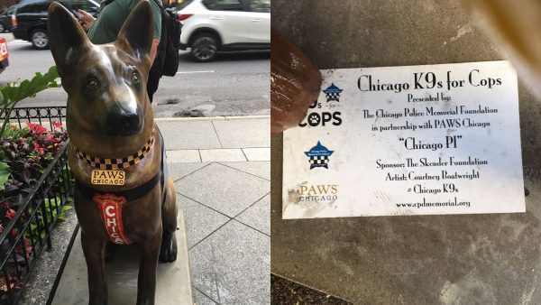 "There were over one hundred sponsors for ""K9's for Cops"" in 2017. (Image: Monica Song/Vision Times)"