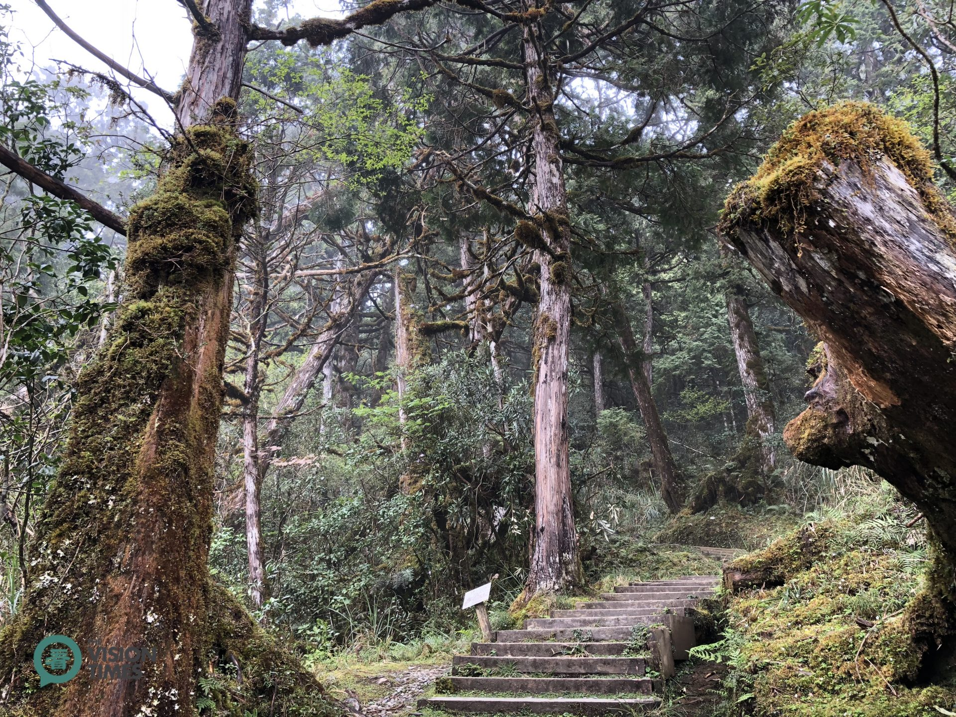 Since Cueifong Lake Circular Trail is deserted most of the time, it still keeps the original outlook of tens of thousands years ago. (Image: Billy Shyu / Vision Times)