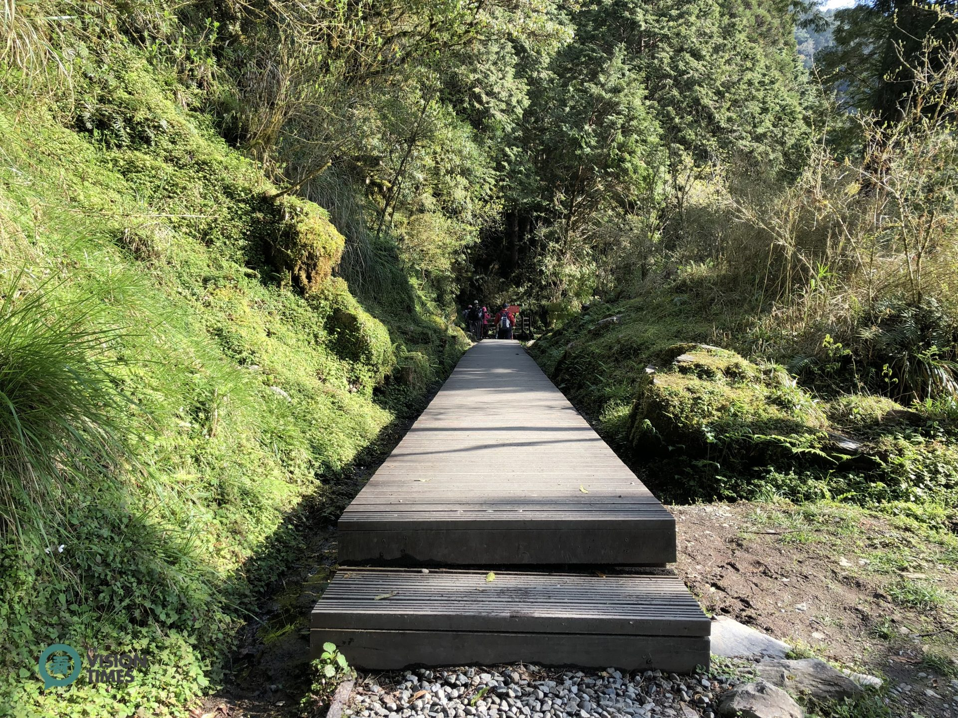 Jiancing Historic Trail is built by ecological engineering method to keep intact of the habitat and environment. )Image: Billy Shyu / Vision Times)
