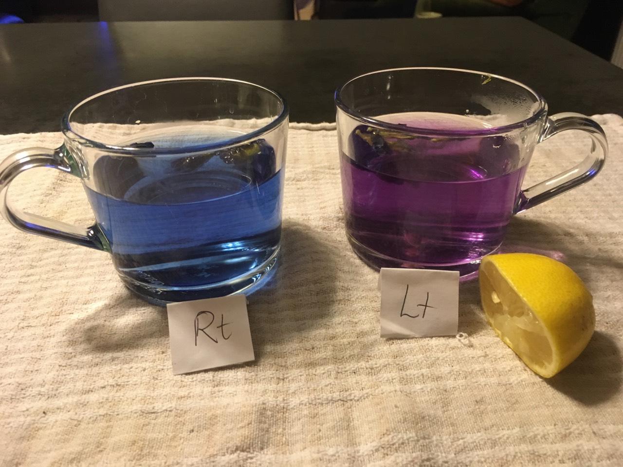 Image by Angela Koh. Left is Butterfly Blue Pea on it's own and right is Butterfly Blue Pea Tea with added lemon juice.