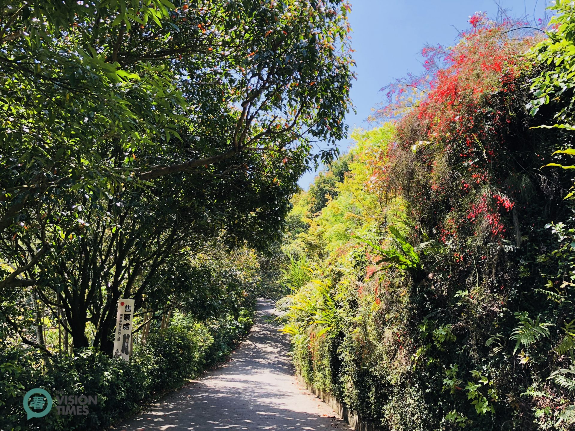 A trail leading to the entrance of Chateau in the Air. (Image: Billy Shyu / Vision Times)