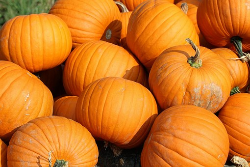Pumpkins are rich in Vitamin A, C and calcium, as well as Tryptophan p which is cancer-inhibitive.