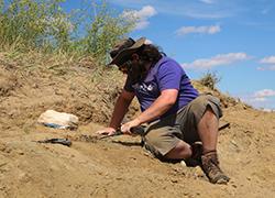 Kyle Atkins-Weltman, KU graduate assistant, digs at the Hell Creek Formation site. Credit: David Burnham.