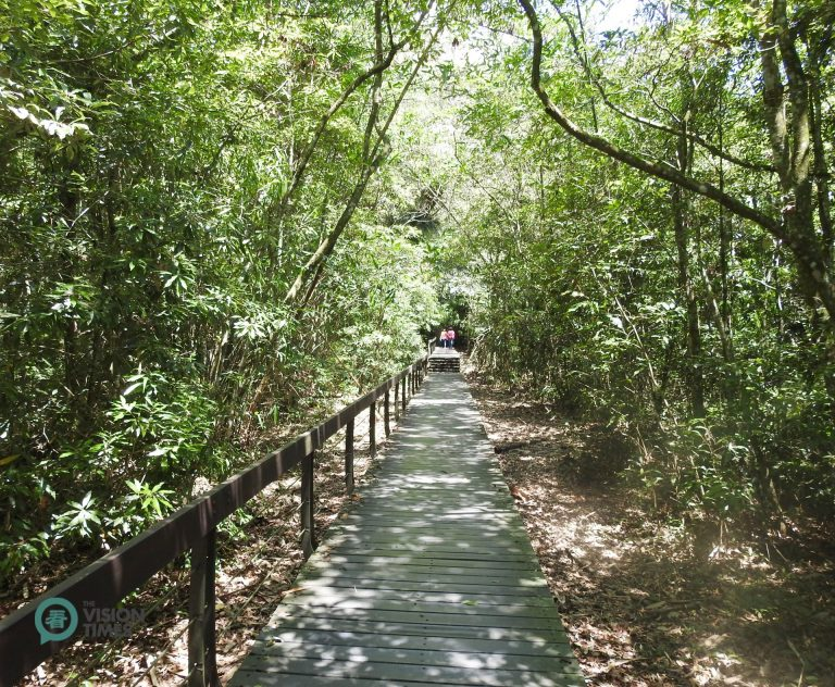A trail passing through the bamboo forest along Taiwan's Sun Moon Lake. (Image: Billy Shyu / Nspirement)