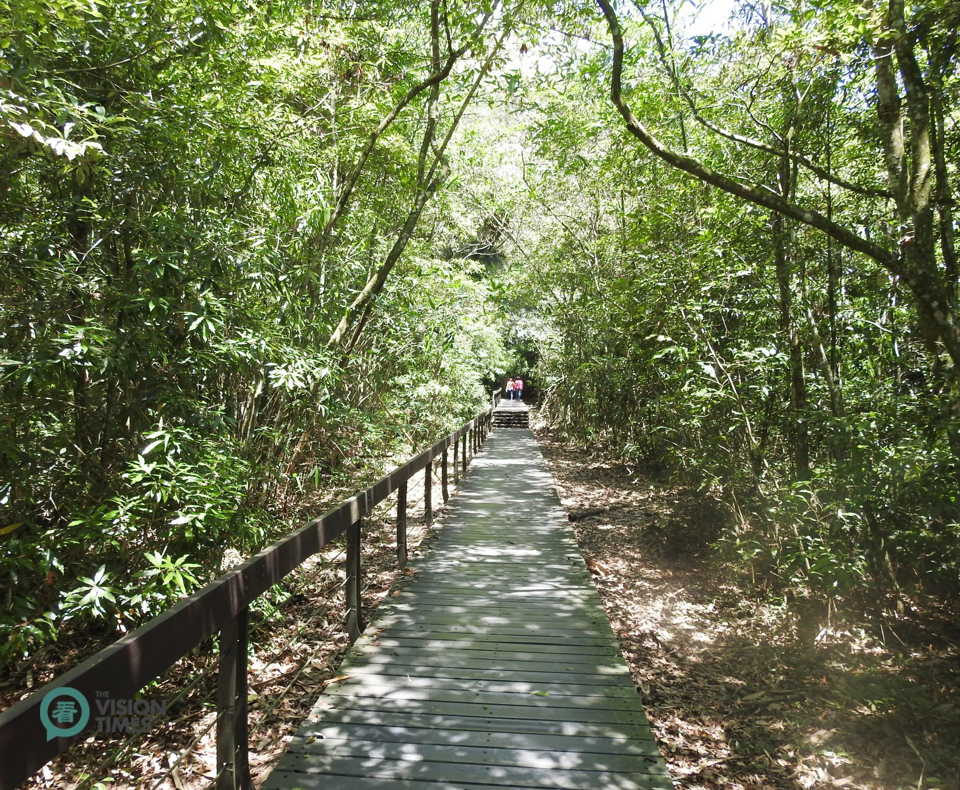 A trail passing through the bamboo forest along Taiwan's Sun Moon Lake. (Image: Billy Shyu / Vision Times)