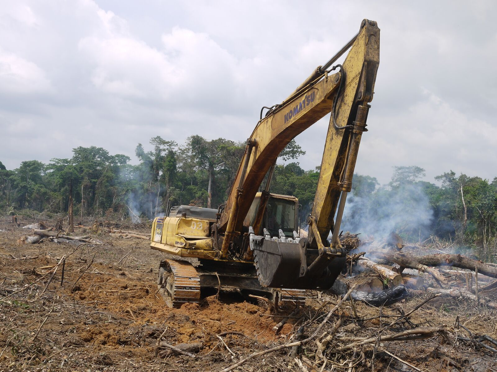 A Chinese road-construction corporation clears rainforests in the Congo Basin (photo: William Laurance).