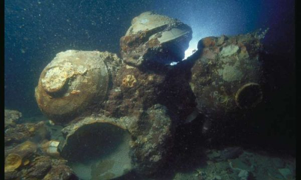 Chinese ceramic bowls in situ at the Java Sea Shipwreck site. (Image: © The Field Museum, Anthropology, Photographer Pacific Sea Resources)