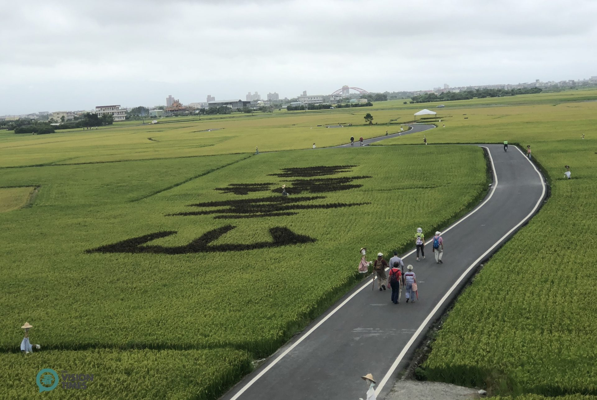 The Chinese characters of 良食大道 and幸福冬山were painted in the rice paddies along the two sides of Mr. Brown Avenue, (Image: Billy Shyu / Vision Times)