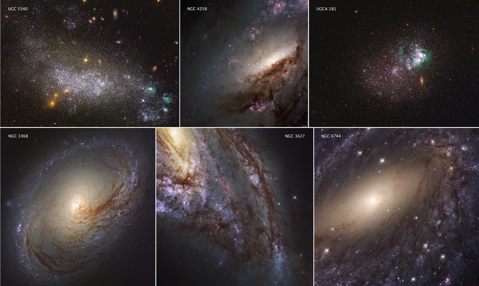 These six images represent the variety of star-forming regions in nearby galaxies. The galaxies are part of the Hubble Space Telescope's Legacy ExtraGalactic UV Survey (LEGUS), the sharpest, most comprehensive ultraviolet-light survey of star-forming galaxies in the nearby universe. The six images consist of two dwarf galaxies (UGC 5340 and UGCA 281) and four large spiral galaxies (NGC 3368, NGC 3627, NGC 6744, and NGC 4258). The images are a blend of ultraviolet light and visible light from Hubble's Wide Field Camera 3 and Advanced Camera for Surveys. (Image: NASA/ESA/LEGUS team)