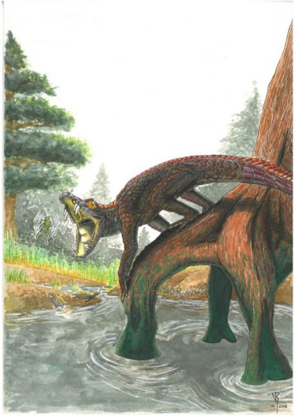 This is a reconstruction of Shartegosuchus. Image: Viktor Rademacher)
