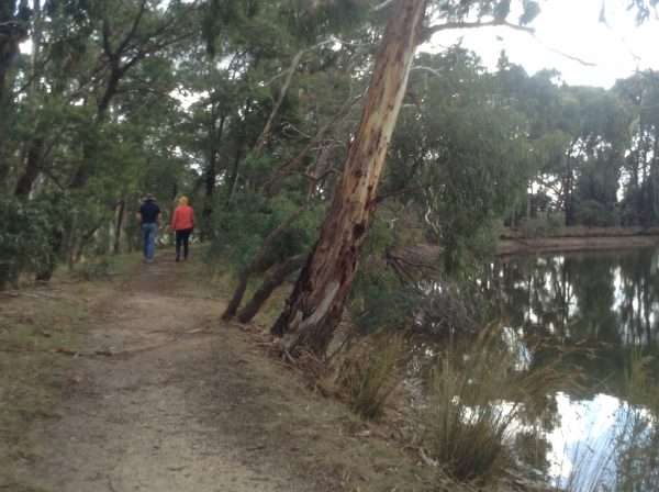 Walking around Kyneton Resort lake. Image by Trisha Haddock.
