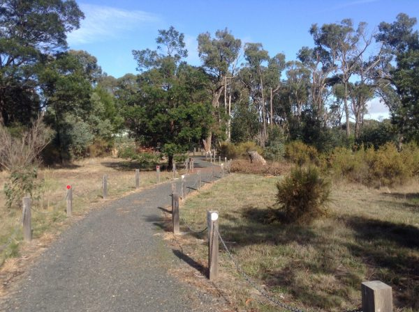 Walking track around the Kyneton Bushland Resort. Image by Trisha.