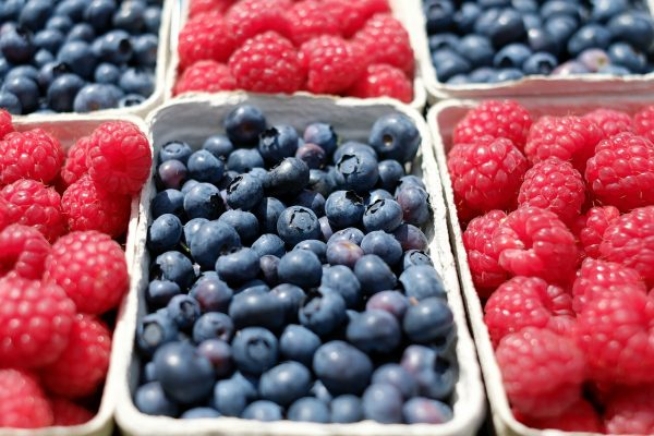 One cup of blueberries has more total antioxidant capacity (TAC) than 20 other fruits and veggies, including cranberries, strawberries, and cultivated blueberries.(Image: pixabay / CC0 1.0)